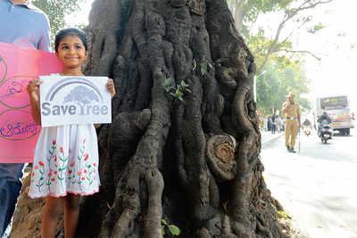 Treeson on Jayamahal