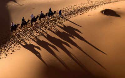 Sahara Desert has grown by 10% since 1920: Study