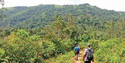 Karnataka: Eco-activists worried over destruction of the Ghats