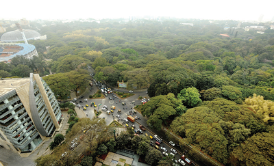 Bengaluru: Campaigns against state government's amendment to Tree Act get louder