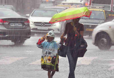 Monsoon 2018: Maximum probability for normal rainfall this year, says IMD