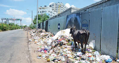 Wards will be littered with waste plants now