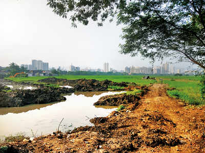 With 'marsh plot' boundary, Metro car shed work begins