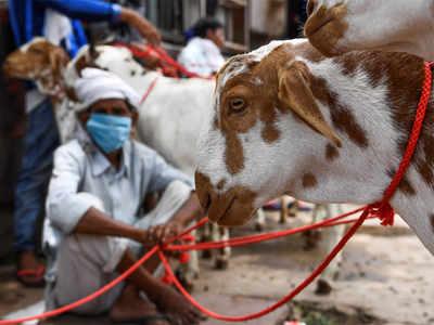 Maharashtra: Samajwadi Party to protest restrictions in transporting animals for Bakri Eid