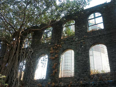 Mumbai Speaks: When the roots are strong