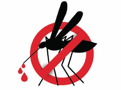 Alarm bells as dengue cases spike