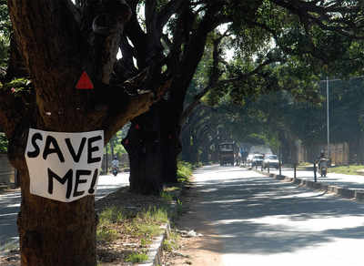 Bengaluru to get its first tree avenue footpath