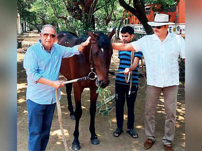 Ravi Shastri to become a race-horse owner