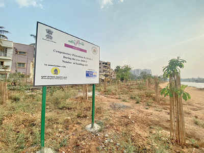 Namma Metro has a plant of action for trees it chops