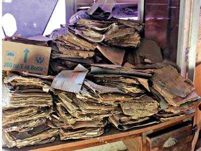 Amdavadis can't get documents they need as termite-infested files choke fire station