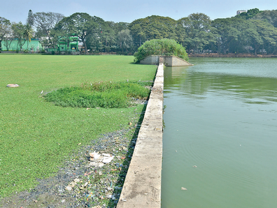 Ulsoor lake getting ready to reveal its lost glory