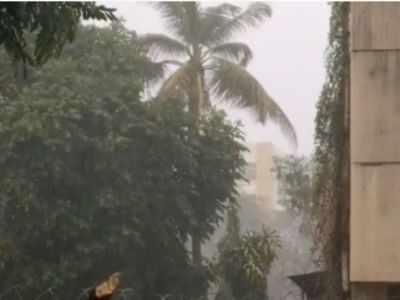 Pune: Rain, lightning and gusty winds lash city