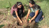Surat: University asks students to plant saplings as 'punishment'