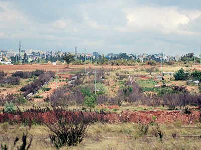 Farmers, BDA land on common ground