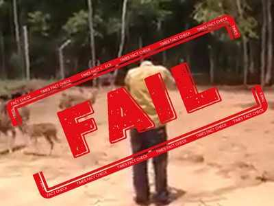 FAKE ALERT: Video showing man shooting a deer is not from India