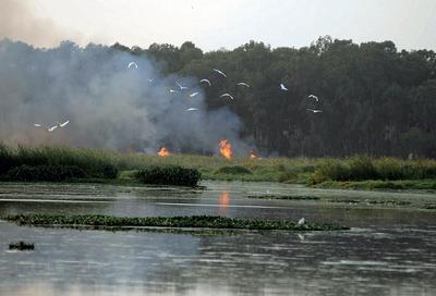 Bengaluru: Indian parliamentarians from other states seek update on Bellandur Lake