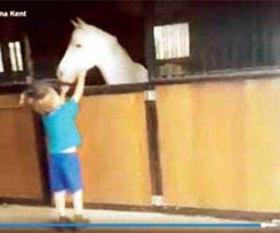 Oz boy sells lemonade over 2 yrs to buy pony