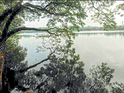 BBMP allocated Rs 30 crore for Sankey Tank