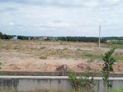 Nadaprabhu Kempegowda Layout plot has thickened