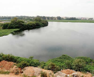 When Lokayukta turned Lake-Ayukta