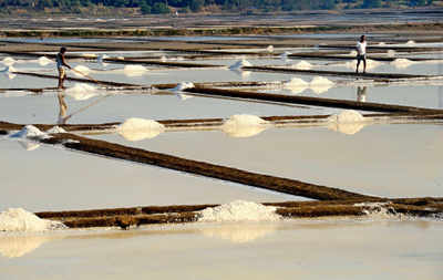 MMRDA assesses how much salt pan land can be used for housing