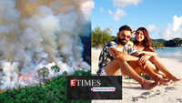 From Ayushmann Khurrana to Dia Mirza, B-wood celebs express concerns over Amazon rainforest fire; Anushka Sharma-Virat Kohli's beach pic from West Indies goes viral, and more…