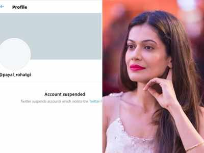 Payal Rohatgi's Twitter account suspended, actress makes appeal to her followers