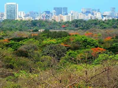 Maharashtra government hands over Aarey Colony land to BMC for zoo