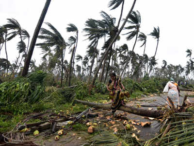 Cyclone Titli claims 7 in Andhra; hits life in Odisha