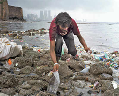 'Rivers are the diagnosis of a city'