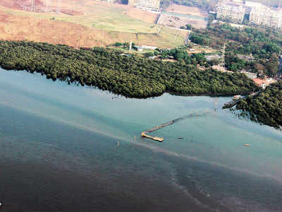 Bridge over Gorai creek gets coastal zone green signal
