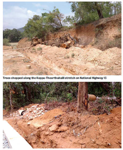 Cut it out, say villagers to Koppa tree-chopping