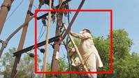 Caught on cam: MP minister blames dust for power cuts, climbs electricity post to clean it