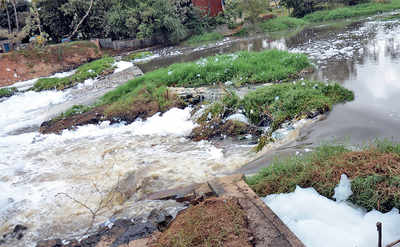At Varthur lake, breach over troubled waters once more