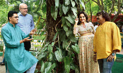 Bowled over by Cubbon