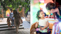 Shahid Kapoor's daughter Misha Kapoor turns 3, three generations of women including Mira Rajput come together to make for a perfect picture