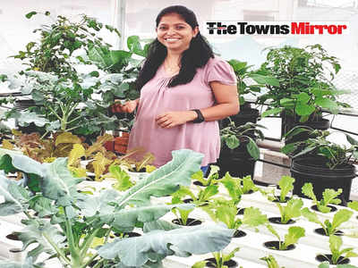 The Towns Mirror Special: Alternate roots: Jincy Samuel's terrace garden grows plants without soil