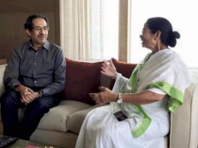 Mamata Banerjee won in West Bengal despite PM Modi, Amit Shah campaigning against her: Maharashtra CM Uddhav Thackeray