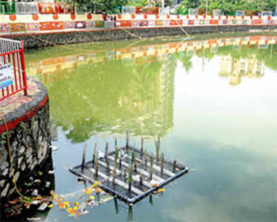 Vandals, thieves ruin plan to clean up Malad pond