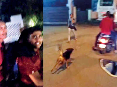 Stray dog saved after being tied to bike, dragged all around Wakad