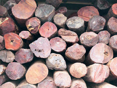 How Bengaluru police outsmarted sandalwood smugglers