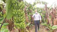'Agriculture reform bills will benefit us', say farmers in Gujarat's Vadodara