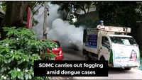 Delhi: SDMC carries out fogging in Safdarjung Enclave to counter rising dengue cases