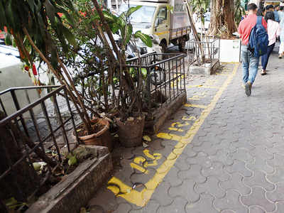 Colaba's  traffic signals, zebra crossings, even trees and roadside plants are hawking zones