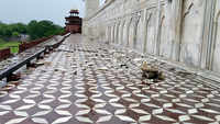 Agra: Thunderstorm damages Taj Mahal's marble and red stone railings