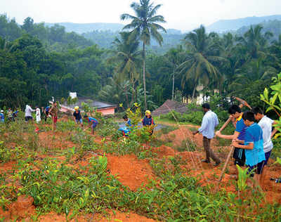 Mangaluru: It's the (percolation) pits!