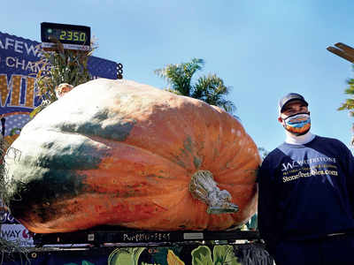 1,066-kg pumpkin wins California contest