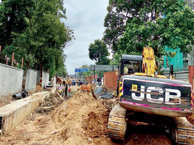 Tree trouble for BBMP