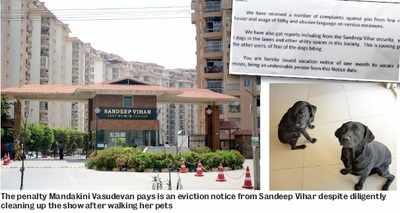 Bengaluru: It's a dog's world for this owner, and she has paid the price