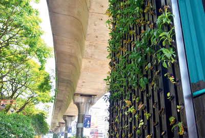 Metro pillars a vertical garden